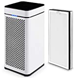 COSTWAY Air Purifier with 2 True HEPA Filter Activated Carbon Filter Auto Air Quality Monitor Up to 430 Sq/ft Coverage Air Cleaner for Large Room, Eliminates Dust, Smoke, Mold, Pets, Household Odors Review