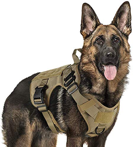 rabbitgoo Tactical Dog Harness Vest Medium with Handle, Military Dog Harness Working Dog Vest with MOLLE & Loop Panels…