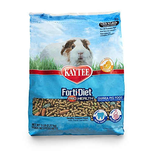 Guinea Pig Diet Pet Food - Kaytee Forti Diet Pro Health Guinea Pig Food, 5-Pound