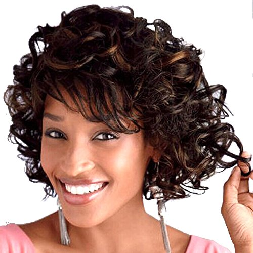 Search : QianBaiHui Short Kinky Curly Wigs for Black Women - American African Women's Wig Heat Resistant Synthetic Hair Fashion Full Wigs (Brown-3)