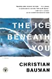 img - for The Ice Beneath You: A Novel book / textbook / text book