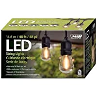 Luces En Serie Exterior Guirnalda String Lights feit electric (1 caja)