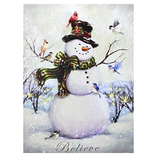 (Northlight LED Lighted Snowman and Bird Friends Christmas Canvas Wall Art 15.75
