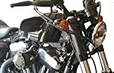 JBSporty ♤ Harley Davidson Sportster ♤ Black out Vinyl Decal Fork Kit ♧ for the NEW 48