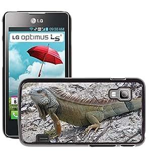 Super Stella Slim PC Hard Case Cover Skin Armor Shell Protection // M00105875 Iguana Lizard Animal World Creature // LG Optimus L5 II Dual E455 / E460