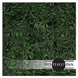 Milltown Merchants Artificial Marijuana Pot Leaf Hedge - Fake Weed Plant - Smoke Shop Decor - Sound Diffuser Marijuana Wall Art - Topiary Cannabis Greenery Panels (2, Cannabis)