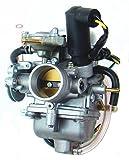 Carburetor for Baja Motorsports Hammerhead Dune Buggy GT GTS SS 250cc DN250 Reaction BR250 Go Kart