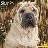 Shar Pei Calendar - Breed Specific Shar Pei Calendar - 2016 Wall calendars - Dog Calendars - Monthly Wall Calendar by Avonside