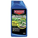 BioAdvanced 704640B Triclopyr Kills Kudzu, Poison Ivy and Other Tough Brush Killer Plus Non-Selective Weed Grass Control, 32 oz, Concentrate-32 oz