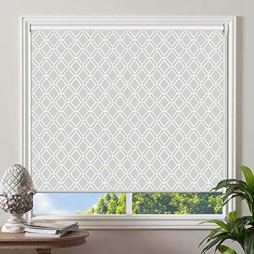 PASSENGER PIGEON Blackout Window Shades, Premium UV Protection Water Proof Custom Roller Blinds, Printed Picture Window Roller Shade, 61 W x 64 L, JIHE-11
