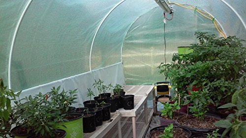 Quictent 16 Stakes KOREA Reinforced PE Cover Greenhouse 15'x7'x7' Arch LARGE Walk in Green Garden Hot House for Plants by Quictent (Image #2)