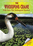 The Whooping Crane, Alison Imbriaco, 1598450328