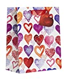 Jillson Roberts 6-Count Medium 10'' x 8'' x 4'' All-Occasion Gift Bags Available in 17 Designs, Watercolor Hearts
