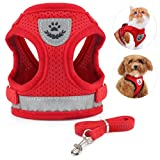 Best Cat Harnesses - Idepet Cat Harness and Leash for Walking Adjustable Review