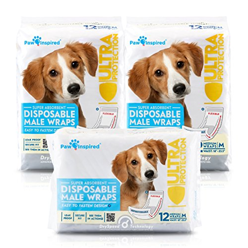 Paw Inspired 36ct Ultra Protection Disposable Male Wraps (Belly Bands), Medium