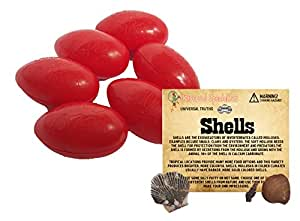 Silly Putty Gift Set - 6 Pack Original Bundle w/ Universal Truth Shells