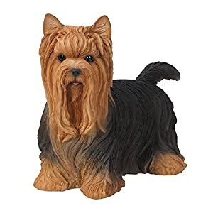 Realistic Life Size Yorkshire Terrier Yorkie Statue Detailed Sculpture Glass Eyes Hand Painted Resin 12 inch Figurine Home Decor Amazing Likeness 3