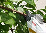RYOBI rechargeable pruning shears BSH-120 import