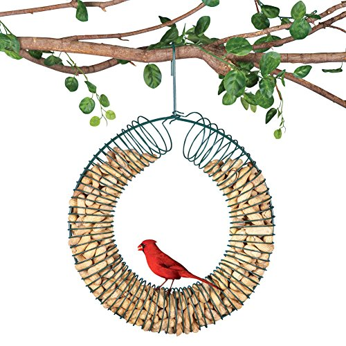 Hanging Peanut Wreath Bird Feeder