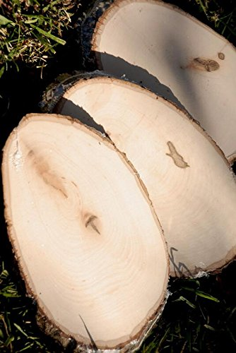 Richland Wood Tree Slices Small 7-10.5'' x 5-5'' Set of 24
