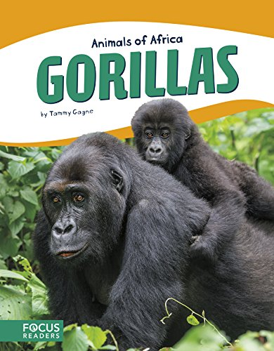 - Gorillas (Focus Readers: Animals of Africa: Beacon Level)