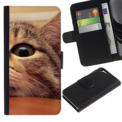 LASTONE PHONE CASE / Luxe Cuir Portefeuille Housse Fente pour Carte Coque Flip Étui de Protection pour Apple Iphone 5 / 5S / Mongrel American Shorthair Manx Cat Eye