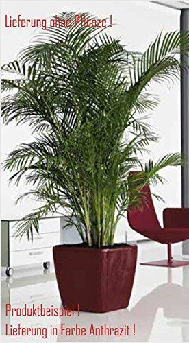 Blumenübertopf Quadro Premium, für Innen geeignet, Farbe Anthrazit, 50x50x47cm