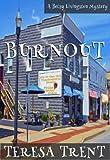 Burnout (Pecan Bayou Series Book 5)