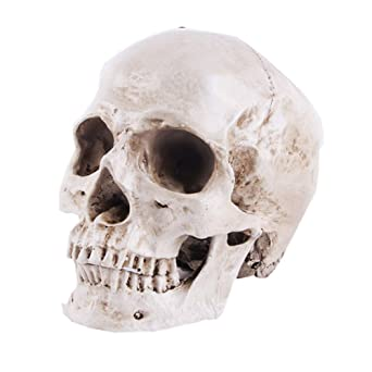 Lifesize Realistic Resin Human Skull Gothic Halloween Party Ornament Grey