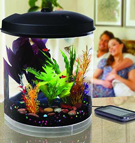 Koller Products AquaTunes 3.5 Gallon Aquarium with Sleep Sound Machine, includes Natures Sounds; Ocean Waves, Rain Forest, Bubbling Streams, and Thunderstorms, MP3 Player and Speakers - AQ35000A
