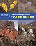img - for The Color Encyclopedia of Cape Bulbs book / textbook / text book