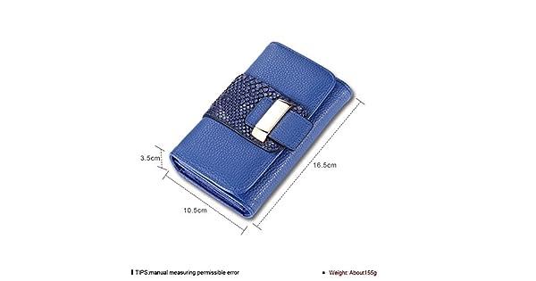 Amazon.com: Cinta de velcro azul Concha Fashion/dibujo Large ...