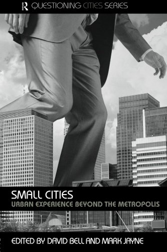 Small Cities: Urban Experience Beyond the Metropolis (Questioning Cities)