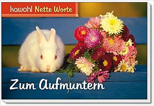 Nette Worte Zum Aufmuntern 9783880878839 Amazon Com Books