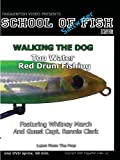 School Of Saltwater Fishing With Whitney March