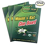 NoBuzz Mouse Rat Glue Trap, Strength Sticky Boards, Extra Large Size, Peanut Butter Scented, Catches Insect Lizard Spider Cockroach Rodent Scorpion Snake, Perfect Use for Indoor and Outdoor