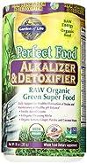 Garden of Life Perfect Food Organic Green Super Food