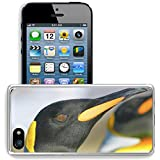 MSD Apple iPhone 5/iPhone 5S/iPhone SE Clear case - Best Reviews Guide