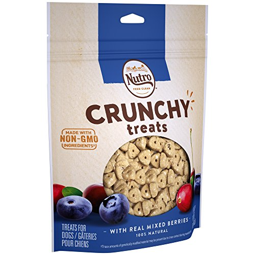NUTRO Crunchy Dog Treats with Real Mixed Berries, 16 oz. Bag ()