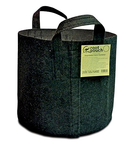 Root Pouch Boxer with Handles – 30 Gallon, Black Bundle of 10