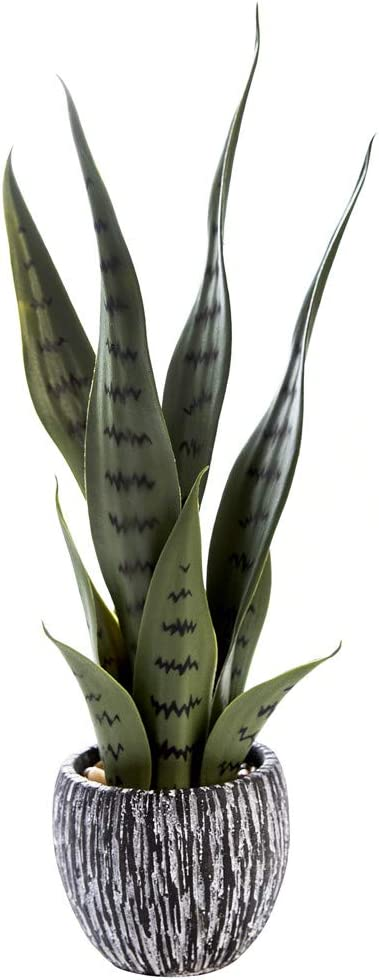 AlphaAcc Small Artificial Snake Plants with Rustic Cement Pot for Home Decoration,Life Like Potted Fake Green Plastic Plant for Kitchen Office Desk Decor with Faux Succulent Leaves