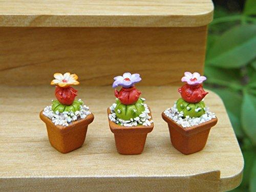 - Miniature Dollhouse Fairy Garden Accessories Set 3 Cactus Flower Pots Plants