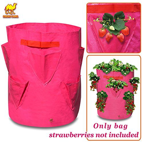 Strong Camel Grow Planter Bag  Strawberry and Herb Plant Tub  3 Pack