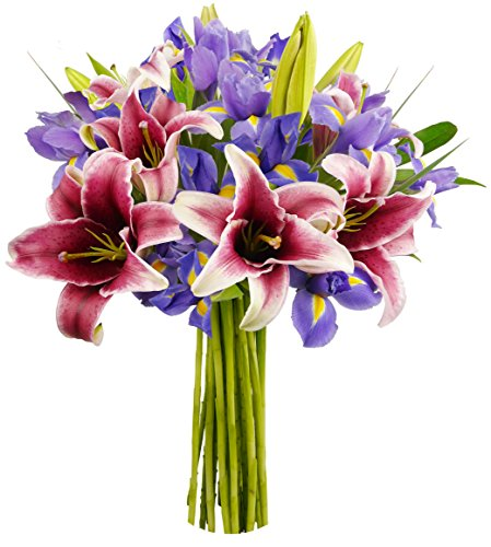 Benchmark Bouquets Stargazer Lilies And Iris  No Vase