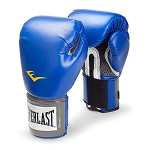 Well-Being-Matters 51oojaMq7jL._SS300_ Everlast 2216 Pro Style Training Gloves (Blue, 16 oz.)