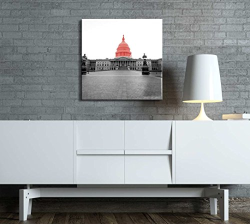 Black and White Photograph of Washington D C with Pop of Red on The White House