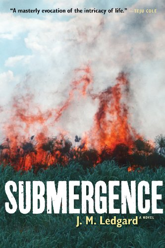 Submergence kindle edition by j m ledgard literature fiction submergence by ledgard j m fandeluxe Image collections