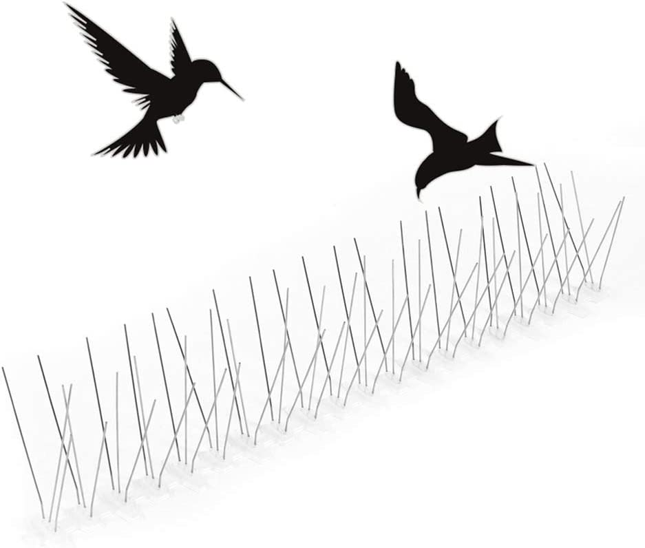BYJIN Clavo de Pájaro, 50 CM, Ahuyentar Pájaros Pinchos para Ahuyentar Pájaros de Acero Inoxidable Keep Pájaros Palomas y Gaviotas, Anti Pájaro y Palomas