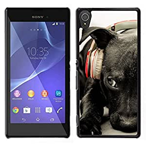 // PHONE CASE GIFT // Duro Estuche protector PC Cáscara Plástico Carcasa Funda Hard Protective Case for Sony Xperia T3 / Black Labrador Retriever Headphones Dog /