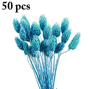 Outgeek Dry Flower Bouquet Natural 50 Branches Dry Flower Preserved Flower Bouquet 28